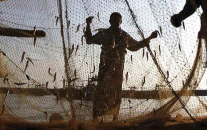 Pakistan releases 18 Indian fishermen